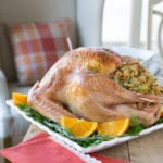 turkey brine turkey brining turkey recipe thanksgiving roasted turkey brine recipe stuffed turkey dressing thanksgiving recipes holiday cooking recipes brine