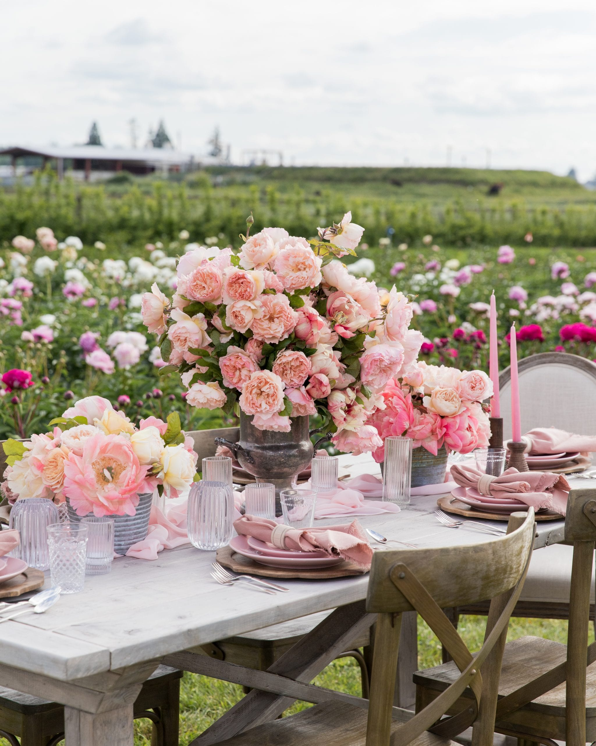 roses and peonies flower farm