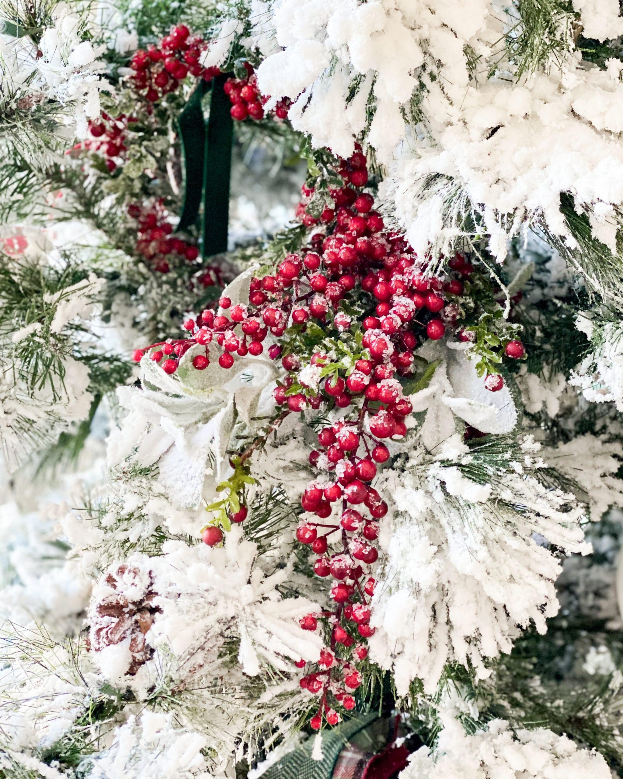 Christmas tree red berries