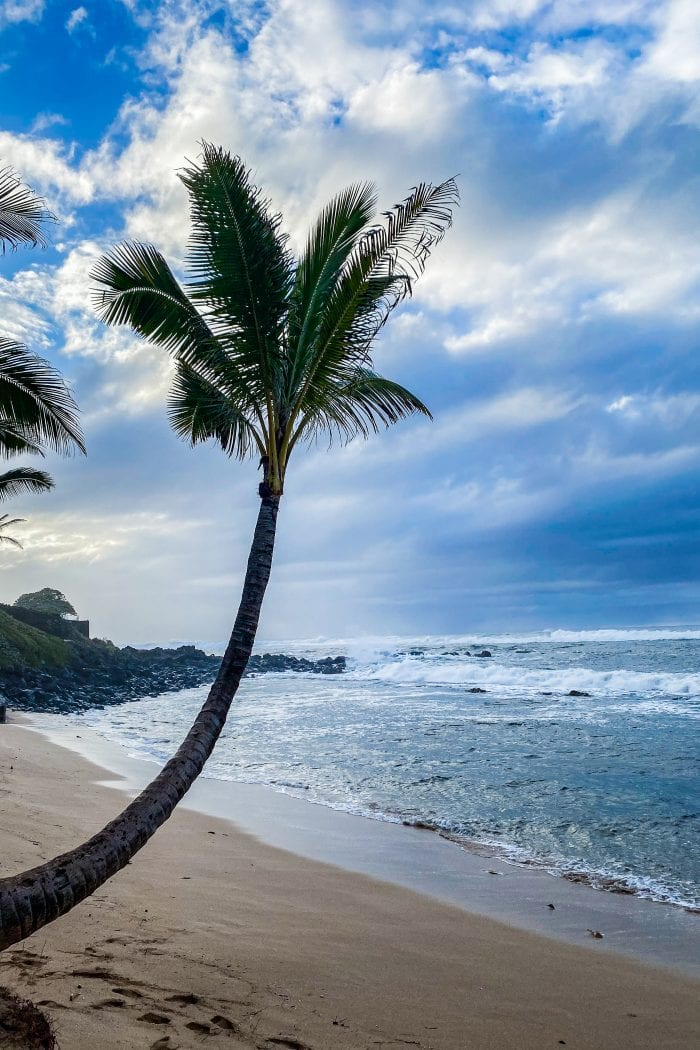 My Favorite Things To Do When In Maui