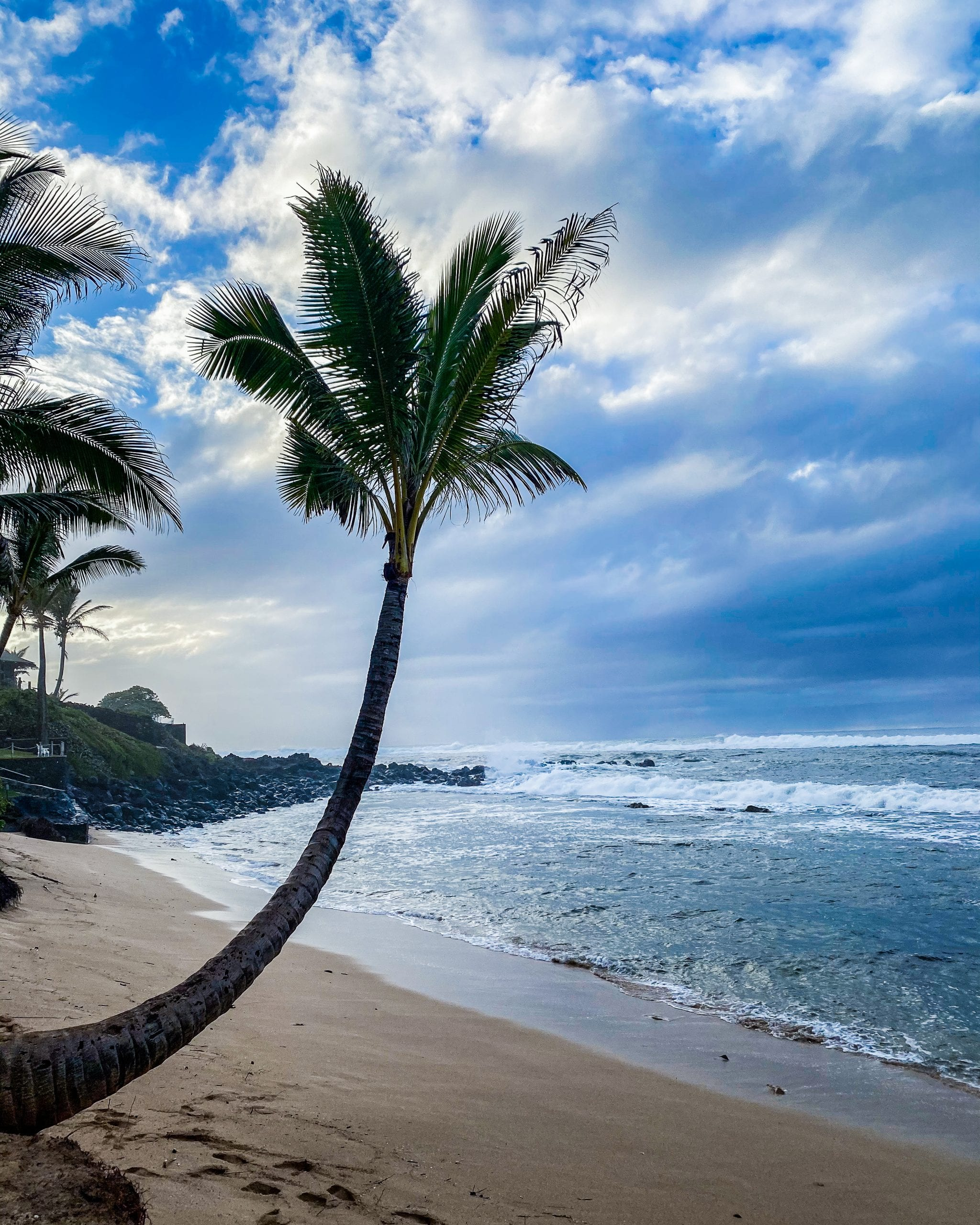what to do when in maui