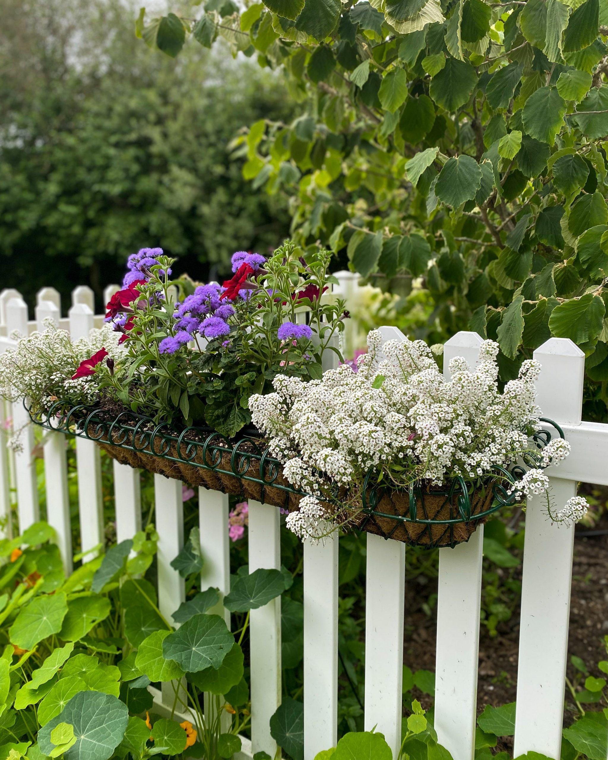 flower basket garden